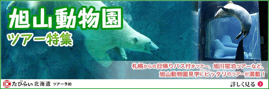 大迫力!動物の行動展示